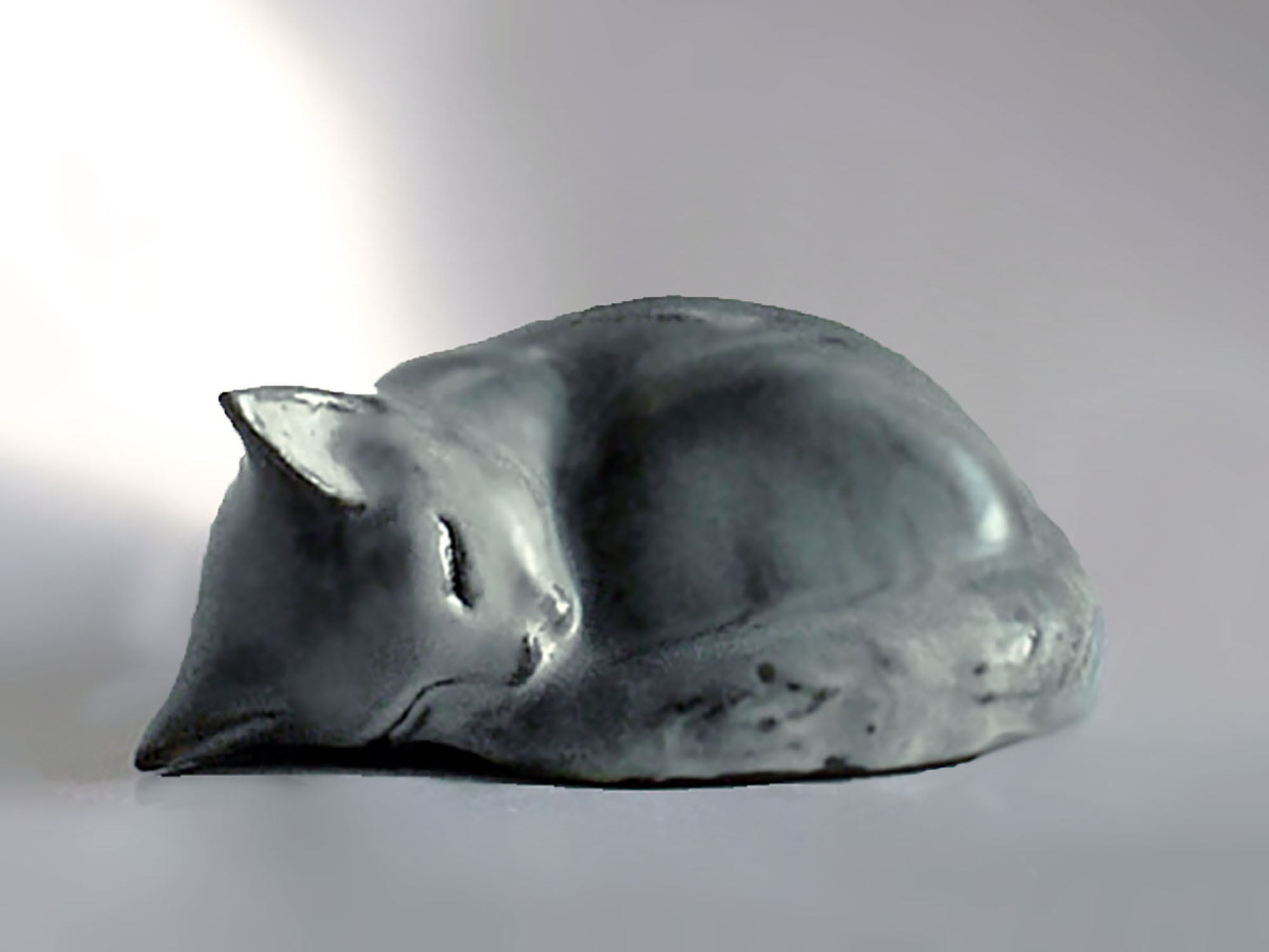 Sleeping Kitten by Christine in Gray