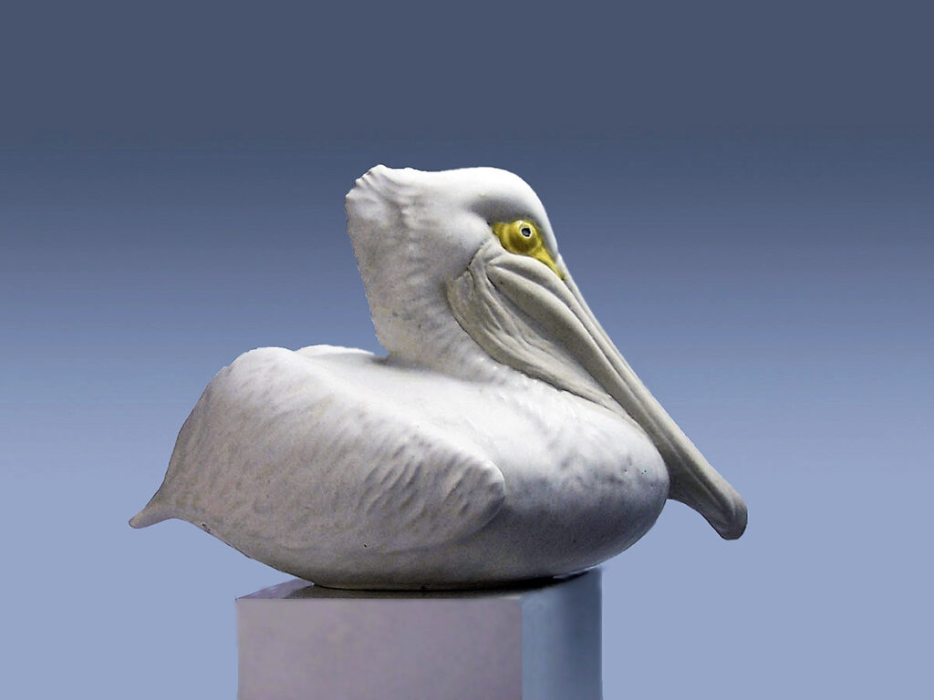 Nesting Pelican White