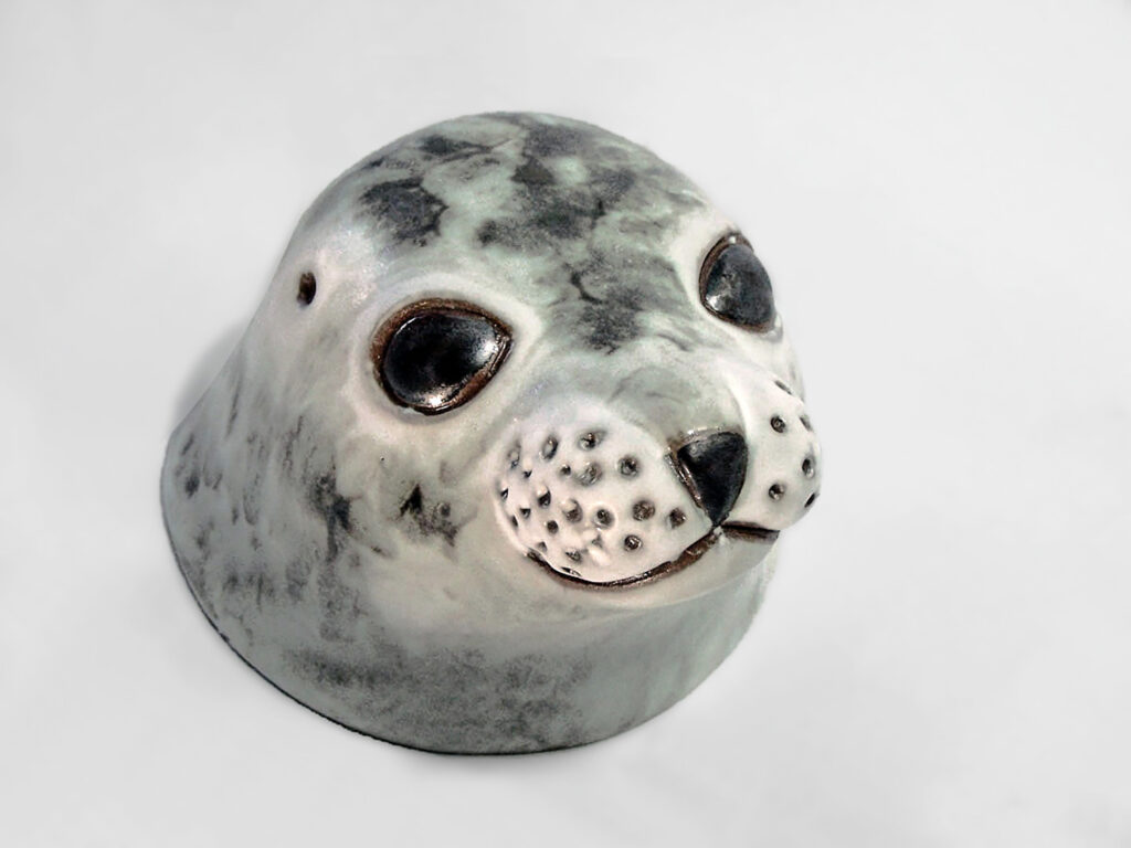 Seal Emerging from Water