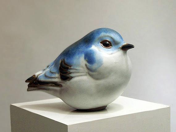 Western Mountain Bluebird, small
