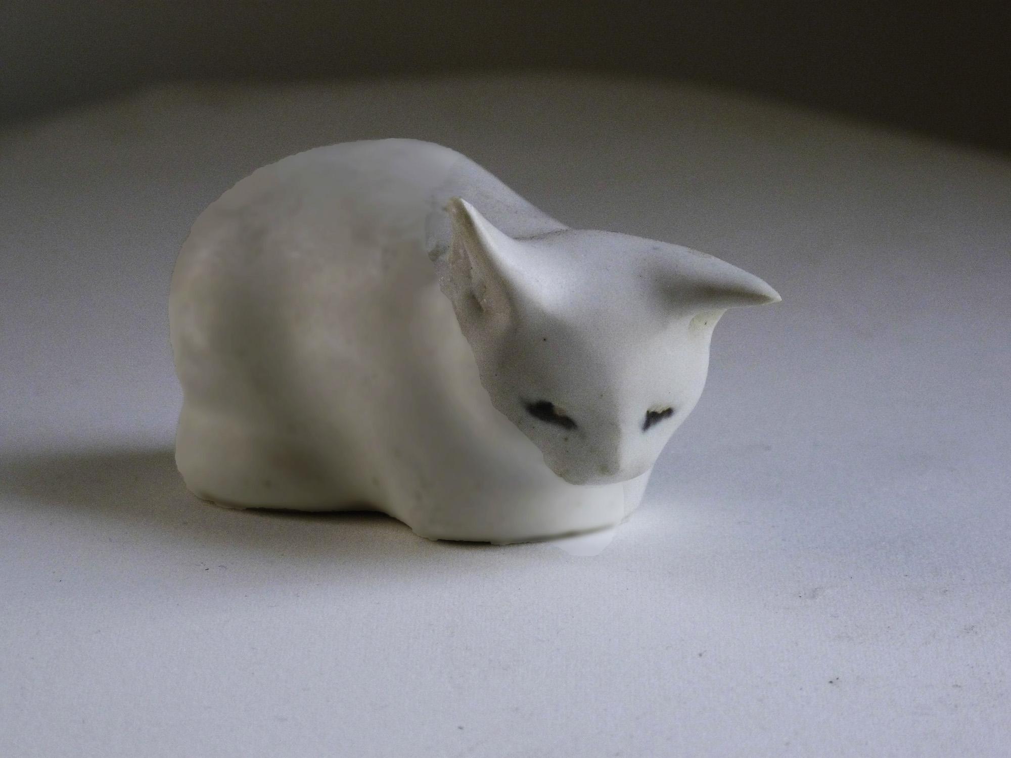 Listening Kitten By Christine in White