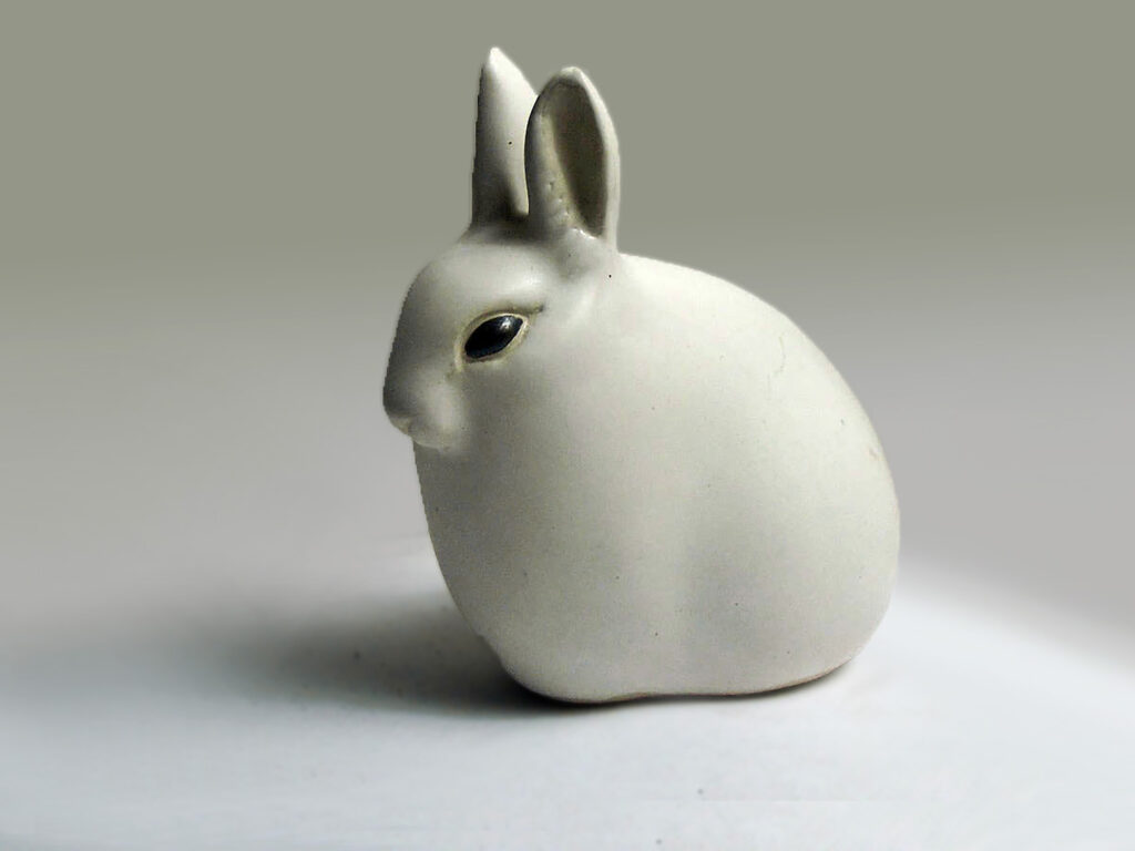 Hare with Ears Up in White